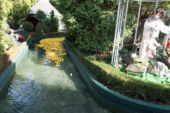 Das Entenrennen. Bild: Europa-Park