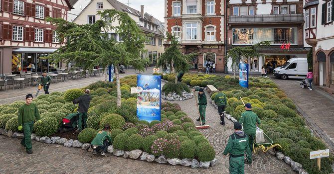 Die Europa-Park Gärtner bei der Fertigstellung des Beetes. Bild: Europa-Park