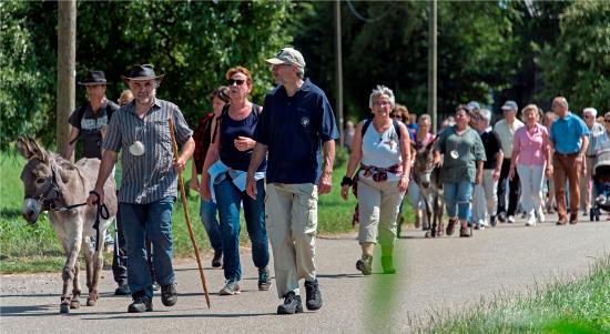 Die Muschel in Europa. Bild: Europa-Park