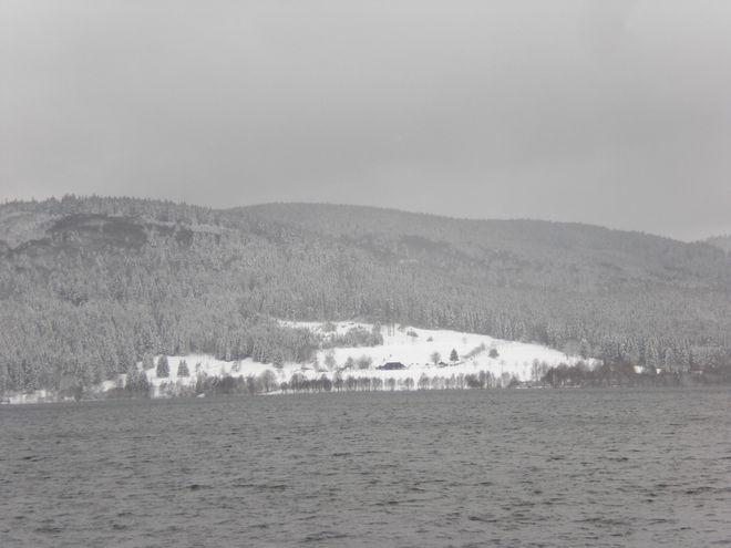 Schnee am Schluchsee, Winter im Schwarzwald. Bild: Thorsten Reimnitz