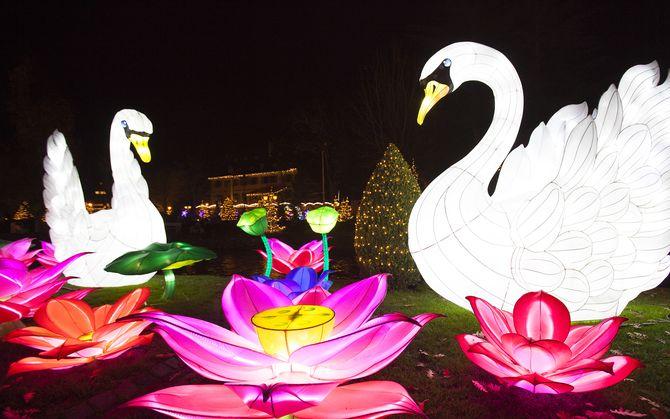 Das Lichterfest im Schlosspark. Bild: Europa-Park