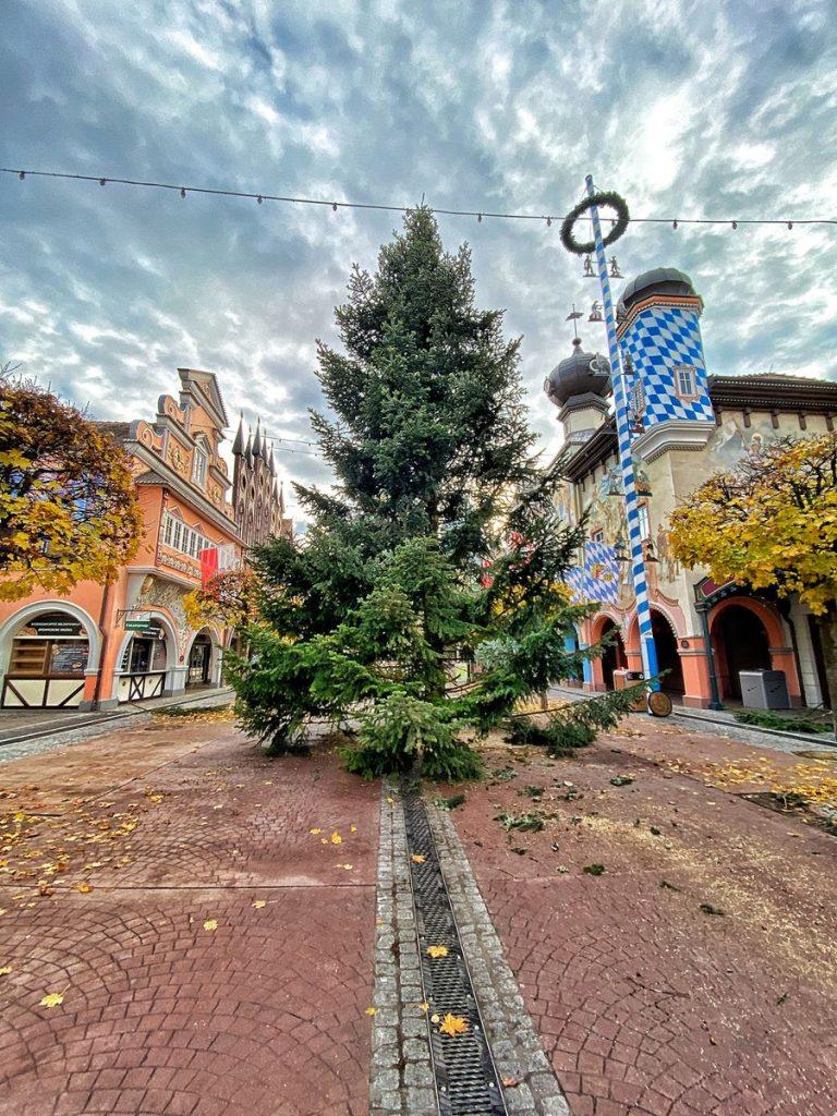 Der Weihnachtsbaum der Gemeinde Sélestat steht schon in der Deutschen Allee im Europa-Park. Bild: Europa-Park